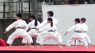 第5回SARUGAKU祭 空手演武 | 平安二段3