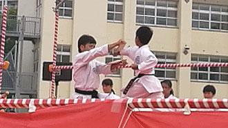 試割り-正拳突き