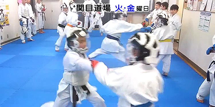 関目小学校、関目東小学校区、空手教室 日本空手道 晴城会